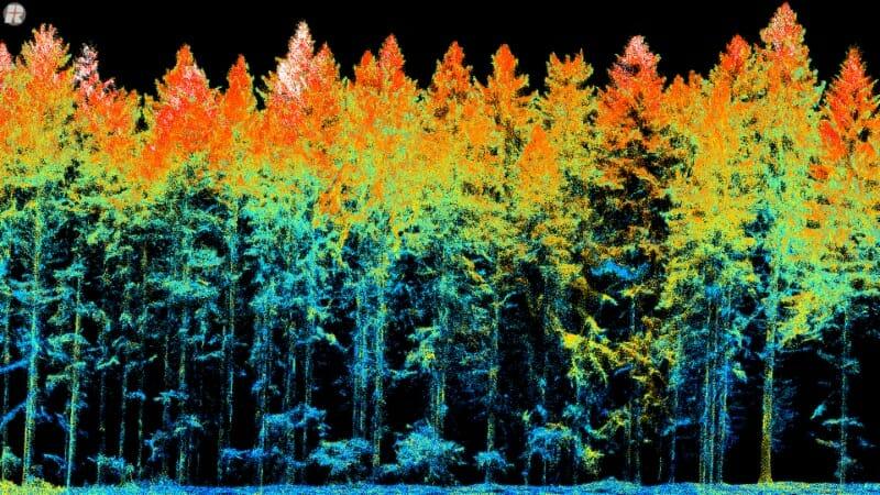 ULS_miniVUX-1DL_Forestry_Reflectance_001